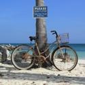 Fine Art Bike
